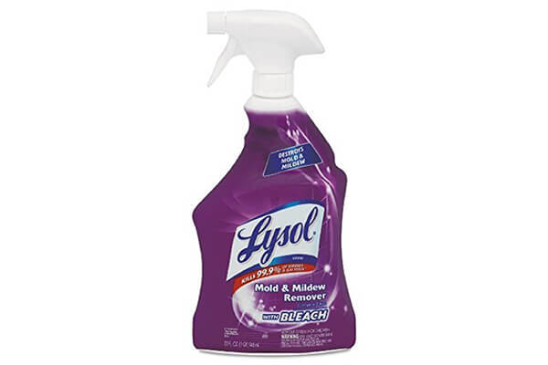 Lysol Mold & Mildew Stain Remover