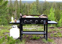 Top 10 Best Gas Grills for BBQ Reviews
