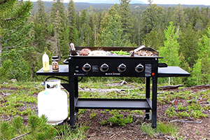 top 10 best gas grills for bbq reviews - Best Gas Grills
