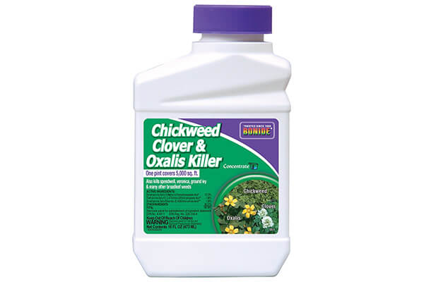 Bonide Chemical Chickweed, Clover and Oxalis Killer