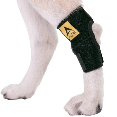 Agon Dog Canine Rear Hock Joint Brace Compression Wrap with Straps Dog for Back Leg Protects