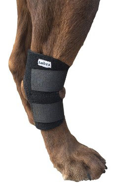 Dog Canine Rear Leg Hock Joint Wrap Protects Wounds as they Heal Compression Brace Heals