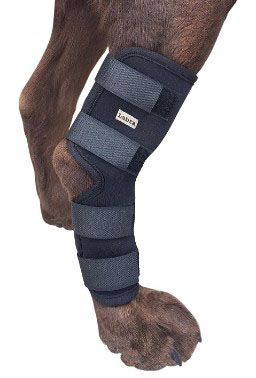 Labra Co. Dog Canine Rear Leg Brace Heals and Prevents Injuries and Sprains