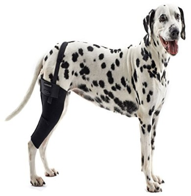 Kruuse Rehab Knee Protector for Dogs