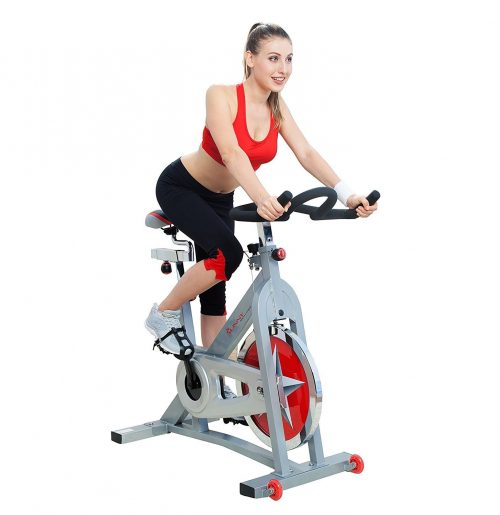 Sunny Health & Fitness Pro Indoor Cycling Bike-Exercise Bikes