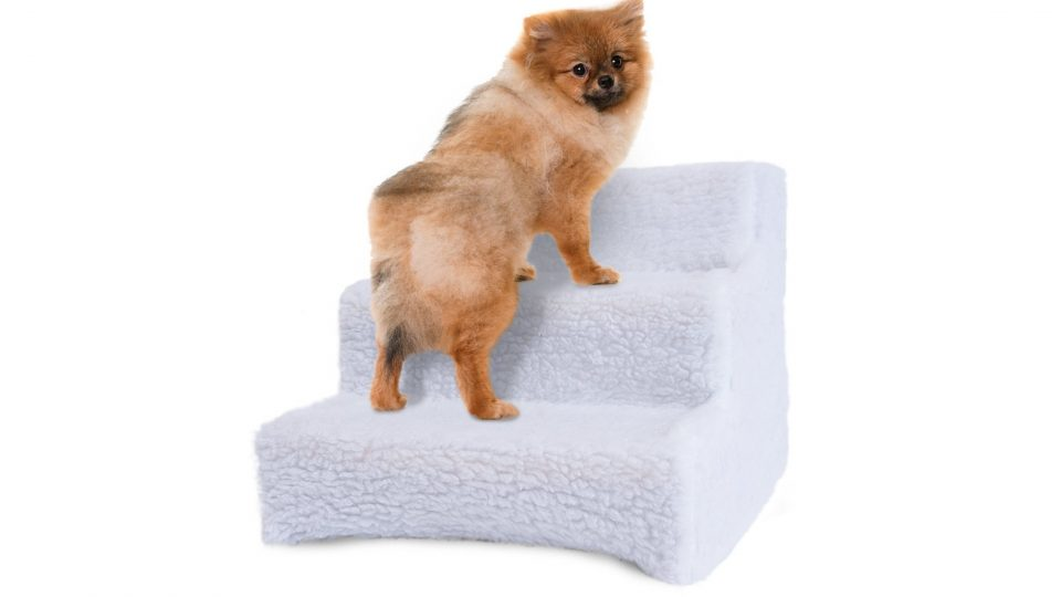 8. Pet Stairs Ramp for High Beds - Doggy Steps for Small Dogs and Cats Used as a 3 Step Dog Ladder for Tall Couch, Bed, Chair or Car