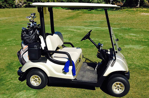 Formosa Deluxe 2-Passenger Golf Cart Covers