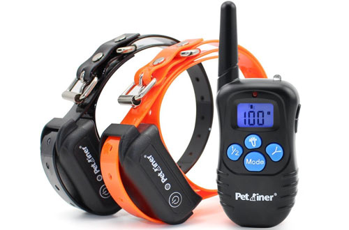 Top 10 Best Electric Dog Training Collars Reviews In 2018