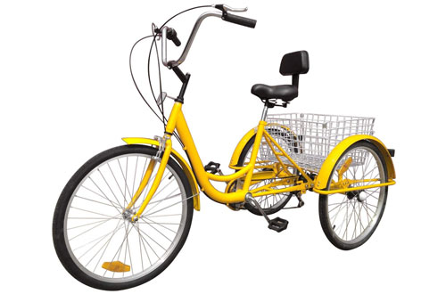 Adult Tricycle Bike